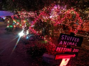 Austin Christmas Lights 37th Street